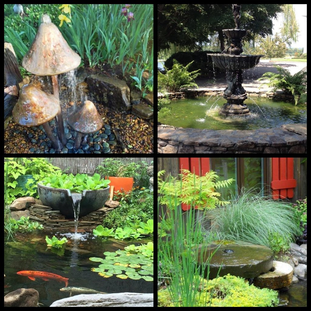 Landscape Lighting Jackson Tn: Disappearing Fountains – Carter's Nursery