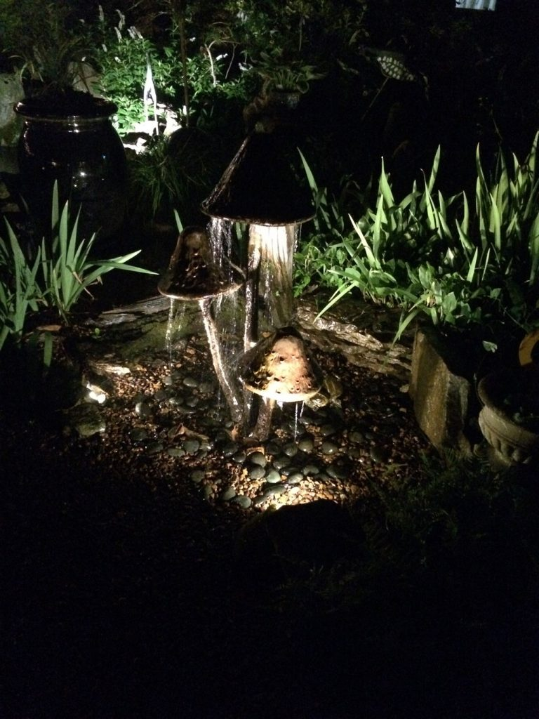 Landscape Lighting Carter S Nursery Pond And Patio Inc