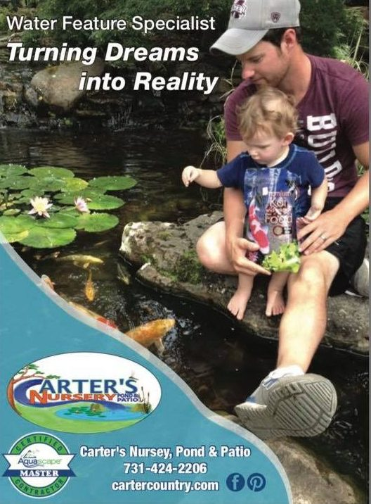 Carters Nursery Pond Patio Offers Professional Water Feature Maintenance Cleaning Services And Repairs In Jackson Tn All Over West